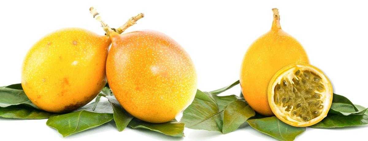 Maracuja | Früchte auf Ihren Blättern.